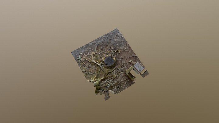 A stump in Mochizuri Kan'non Temple/ 文知摺観音境内の切り株 3D Model