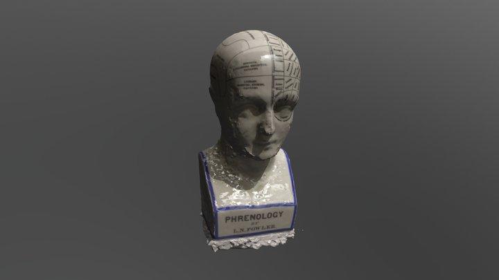 Phrenology 3D Model