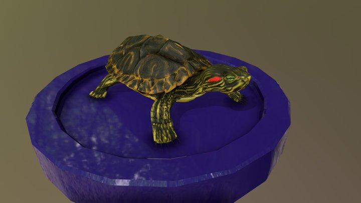 Turtle Project 3D Model
