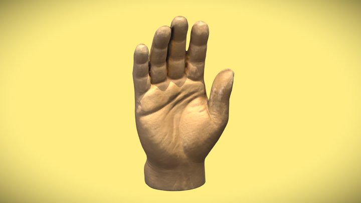 Toy Hand Scan 3D Model