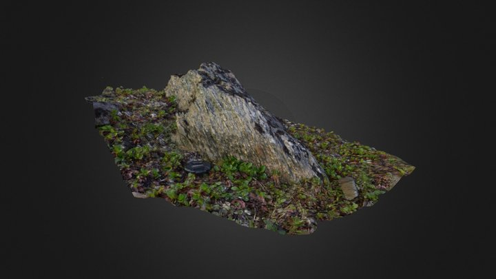 Boulder from shear zone 3D Model