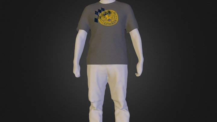 TheShirtgray.zip 3D Model