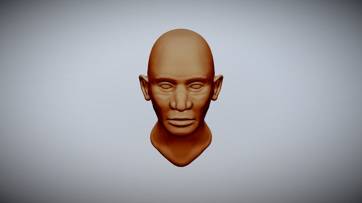 WIP 3D Model