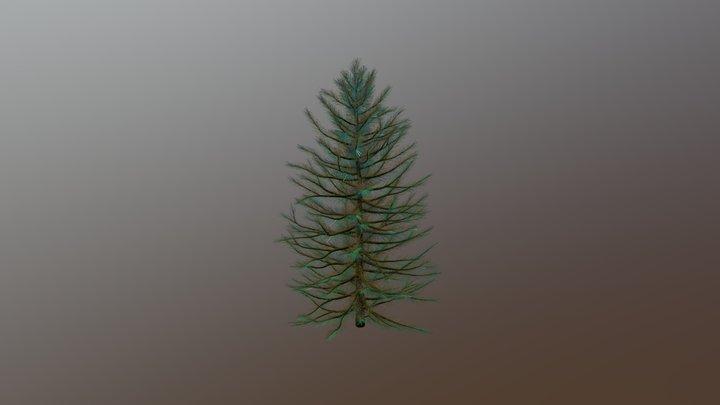 Small Pine Tree 3D Model