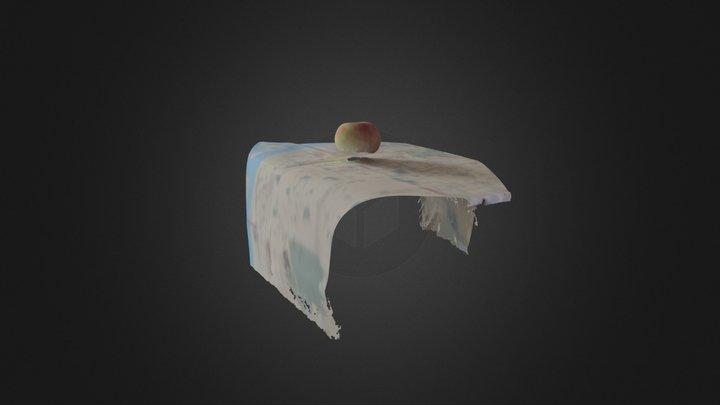 OTA-Scanning 3D Model