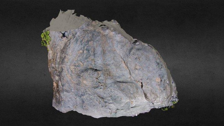 Cloverdale Boulder model 2