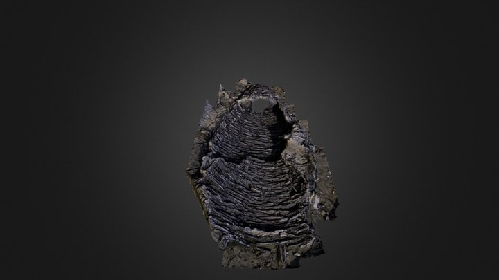 MUS11_Paleo4_Fishtrap 3D Model