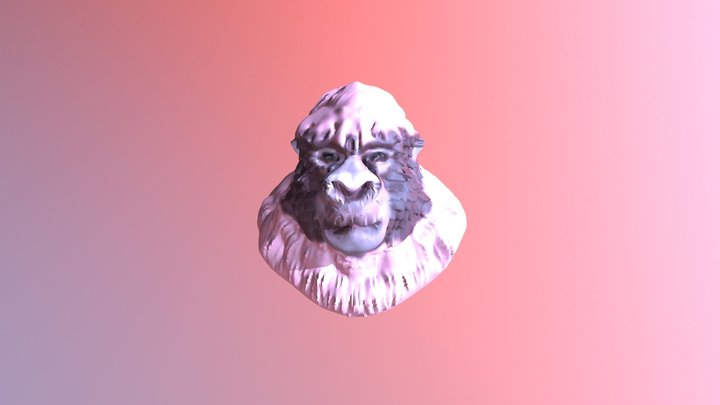 PM3D Skin Gorilla FINAL FINAL COLOR 3D Model