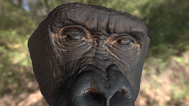 Gorilla Face 3D Model