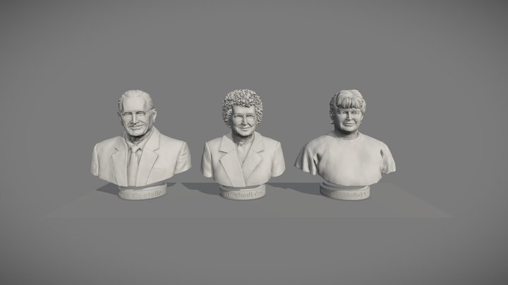 Final Set of Three, 3D Printable Busts 3D Model