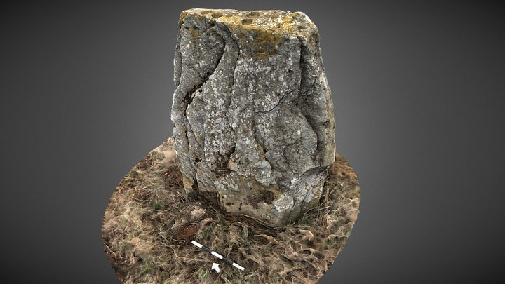 Westerton Standing Stone, Angus, Scotland 3D Model