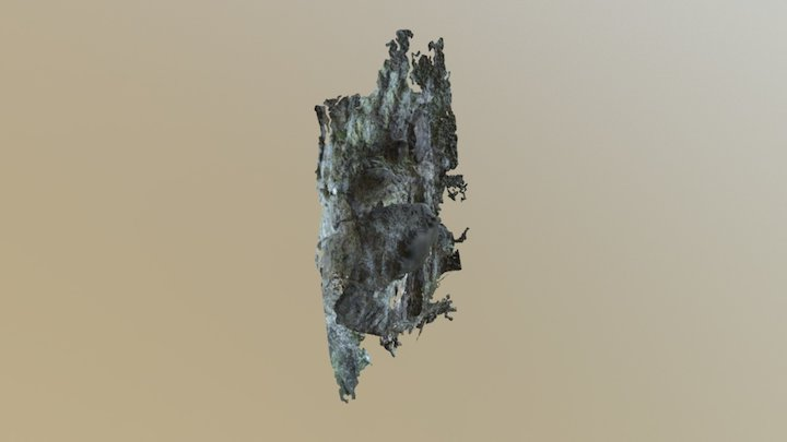 Scenario 1 Upper Rock Formation 3D Model