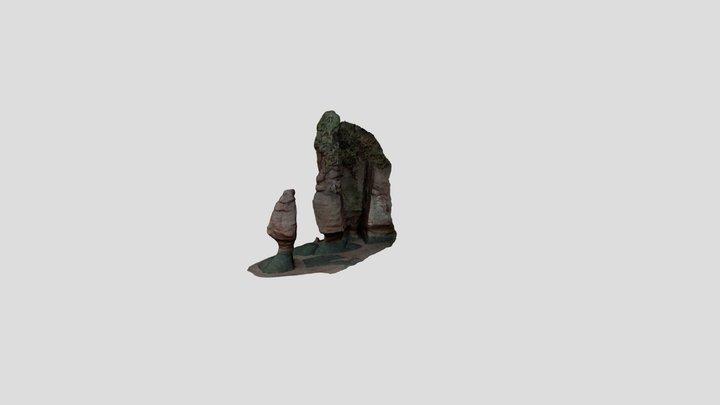 Hopewell Rocks (Sentinel) 3D Model