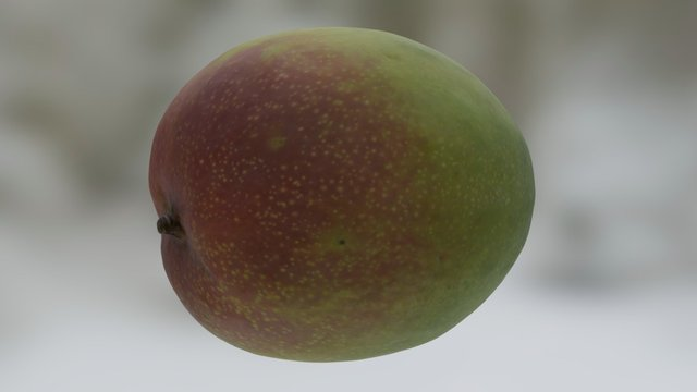 Organic Kent Mango 3D Model