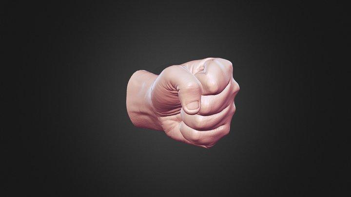 Hand Gesture 5 3D Model