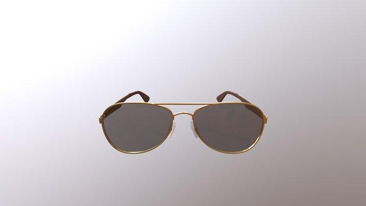 Gold Polarized Sunglasses 3D Model