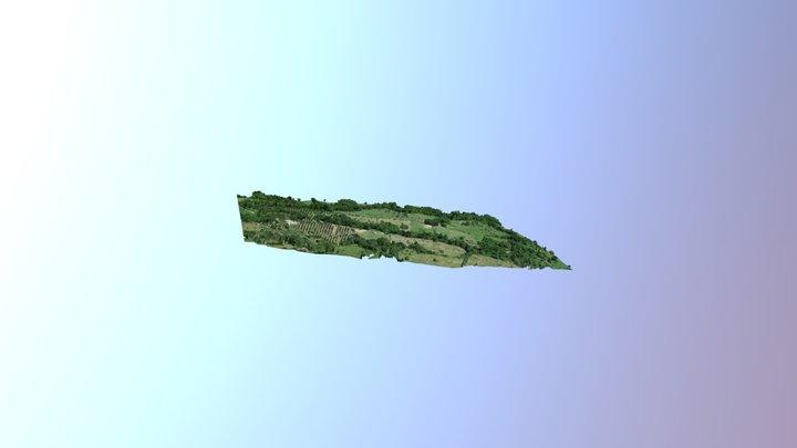 Tamesis Finca Santa Marta 3D Model