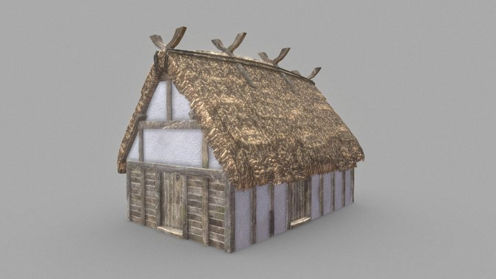 Viking Longhouse 3D Model