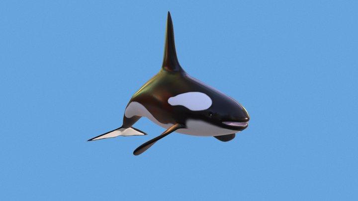 Whale 3D Model