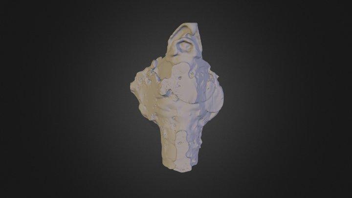 Horse Larynx 3D Model