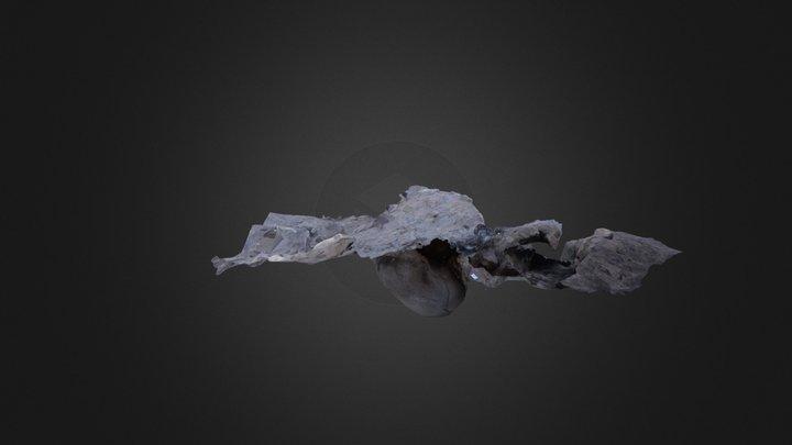 Fotogrametria alero 3D Model