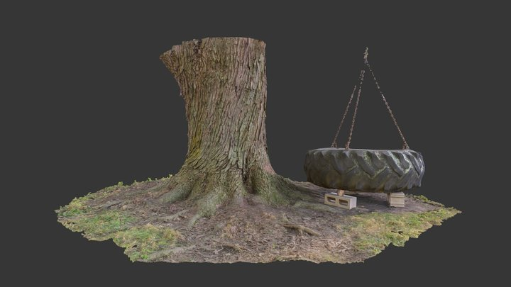 PMP: Tree Trunk & Tractor Tire (V.1) 3D Model