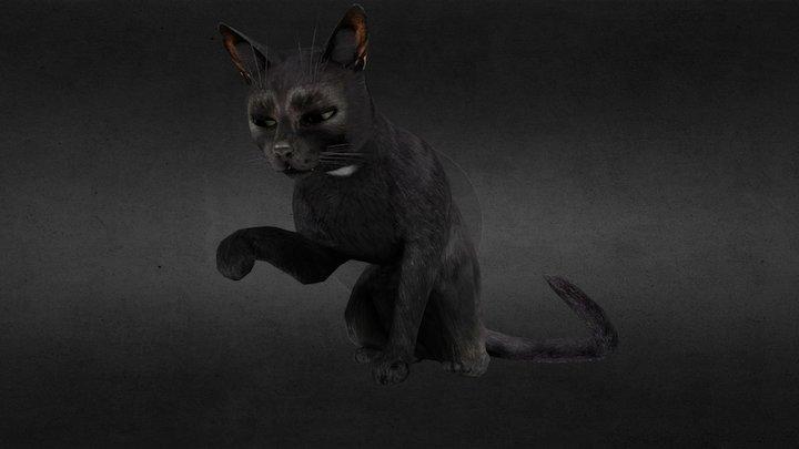 Cat [Murdered: Soul Suspect] 3D Model