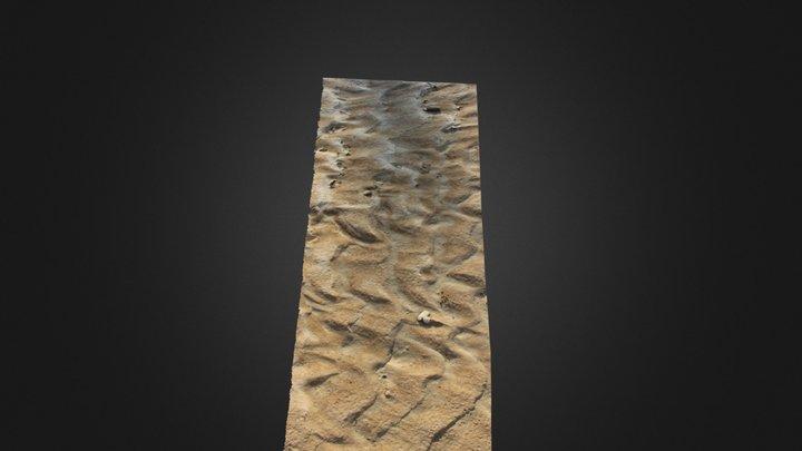 Ripples 3D Model
