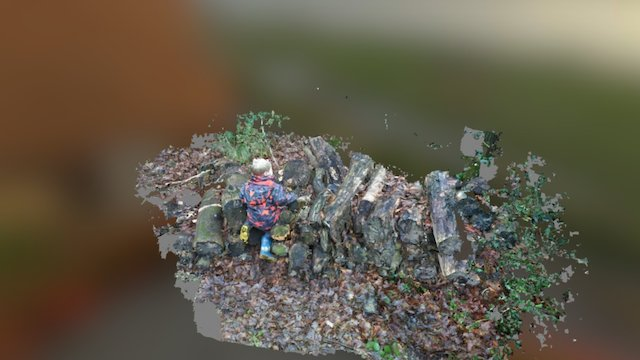 Logpile Scramble 3D Model
