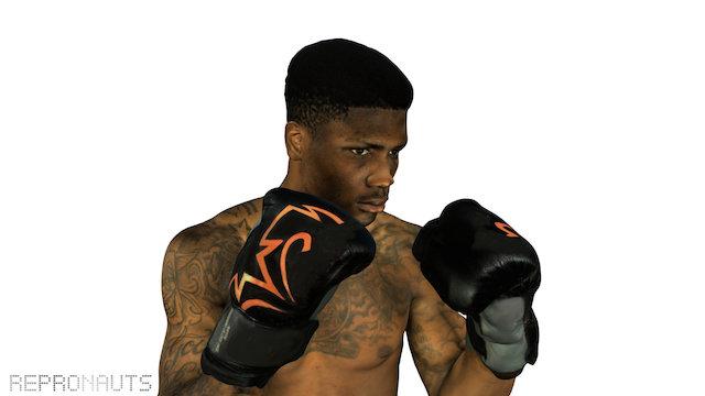 Mikael the Boxer 3D Model