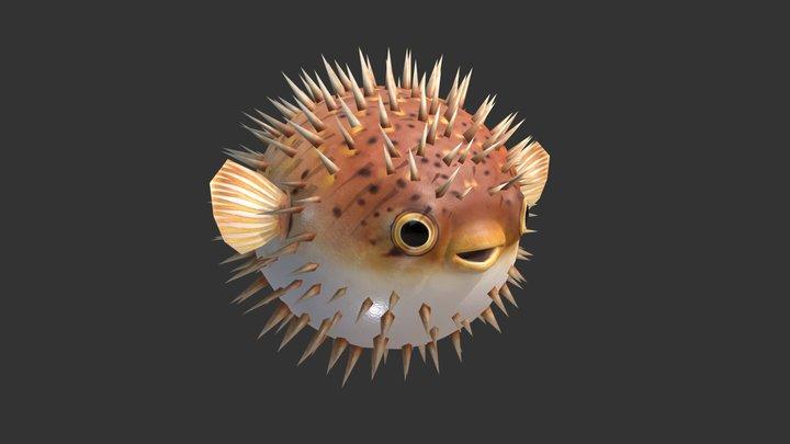 Puffer Fish 01 3D Model