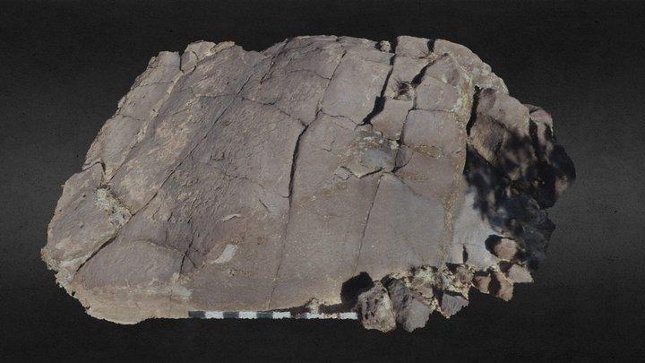 Boulder w/Archaic Petroglyphs (07_014_335-CH) 3D Model