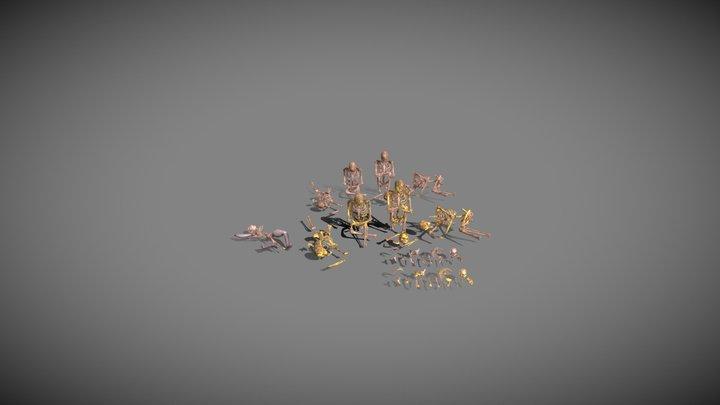 Projet Aaron - Skulls collection 3D Model