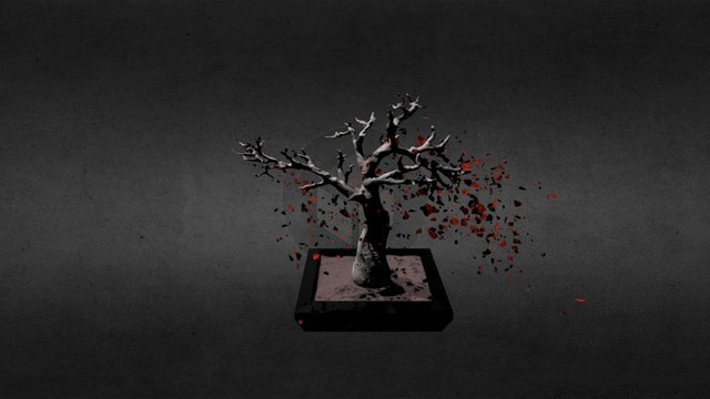 Cherry Bonsai Tree 3D Model