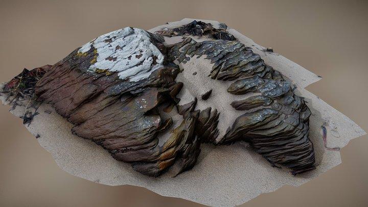 Beach rock 3D Model