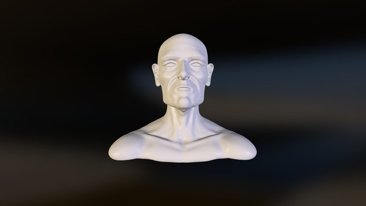 Head test sculpt 3D Model
