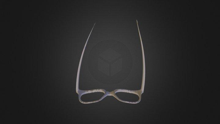 Finished Glasses 3D Model