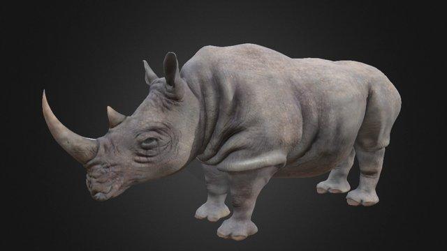 GPF 3 Rhinoceros Anatomy Study 3D Model