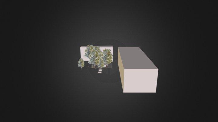 limor  3D Model