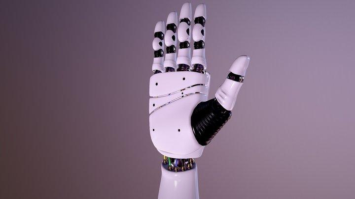 Robot Hand 3D model 3D Model