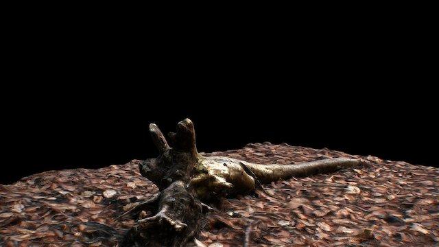Scanned Forest Branch 3D Model