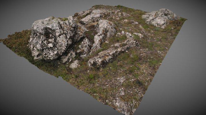Természeti formák | Natural forms 3D Model