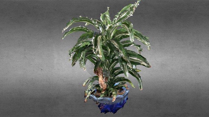 House Plant - 1mm 3D Model