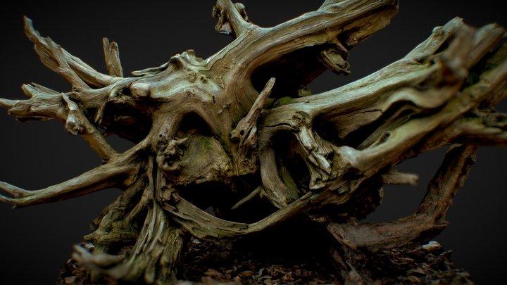 Roots 3 3D Model