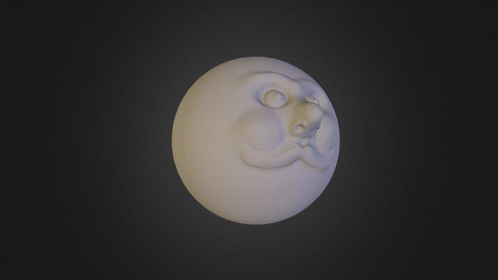 Funny Face 3D Model