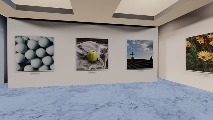 Instamuseum for @@cfdezmunin33 3D Model