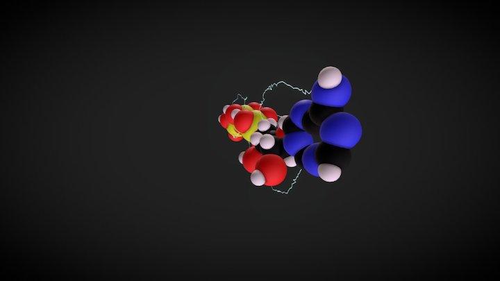 Adenosine Triphosphate 3D Model