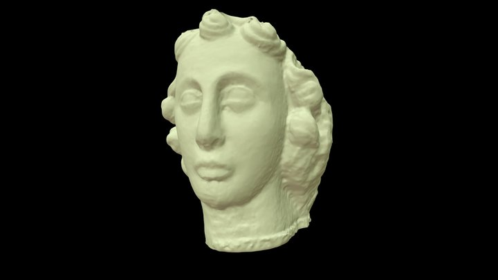 Duke Virtue Copy 3D Model
