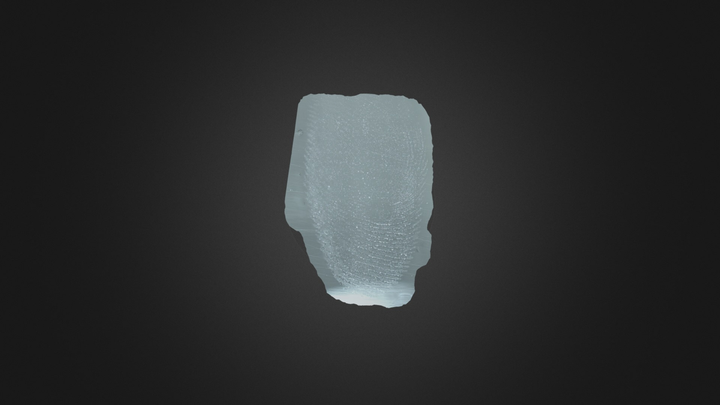 Finger Print 3D Model