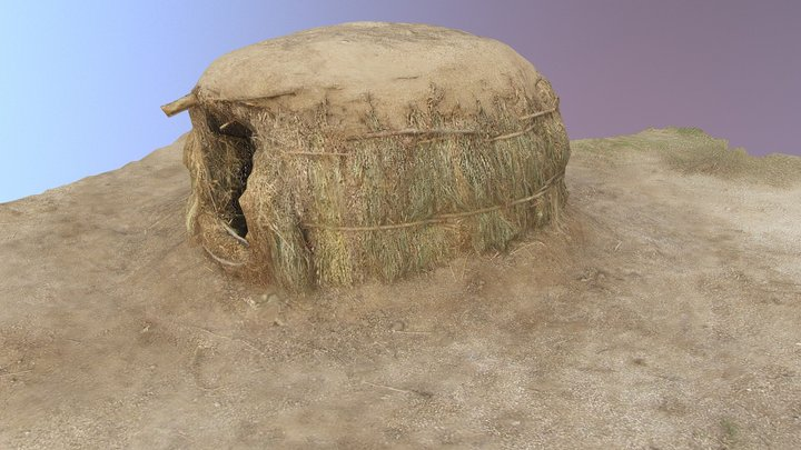 Early Agricultual Period Pit House 3D Model